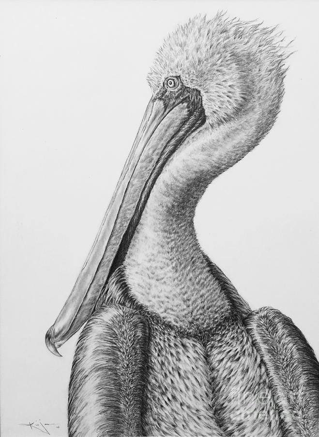 будут рисунок пеликан с лягушкой в пасти этих библейских деревьев