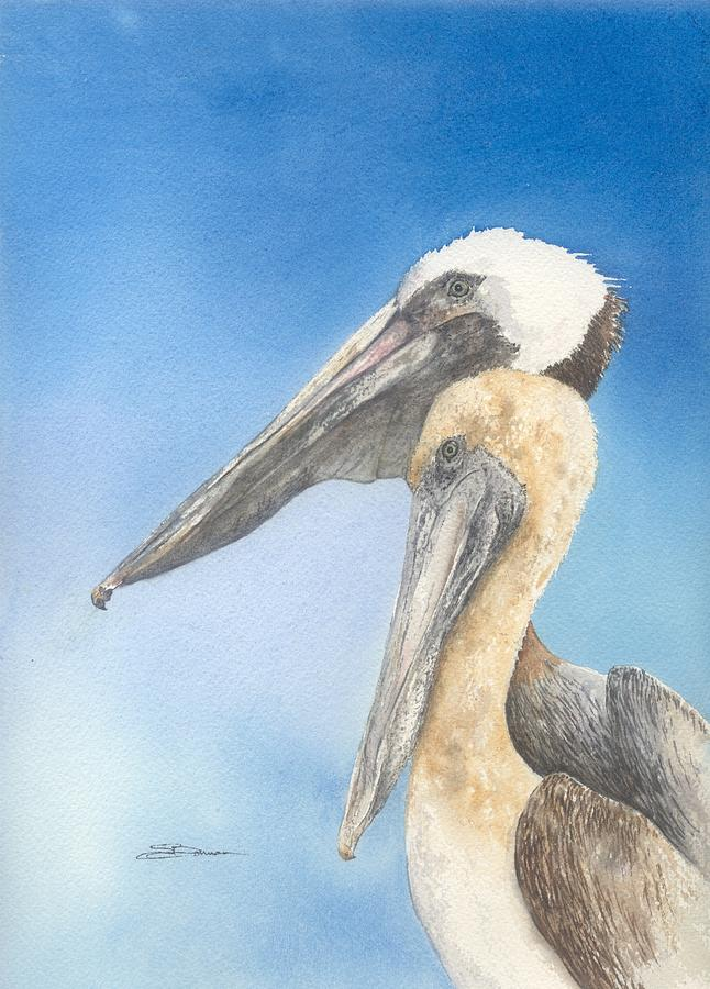 Nature Painting - Brown Pelicans by Sharon Bowman