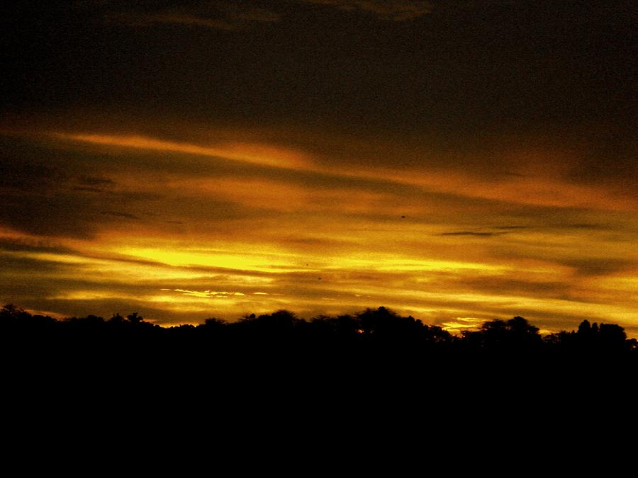 Photo Photograph - Brown Sunset by Kevin Steven