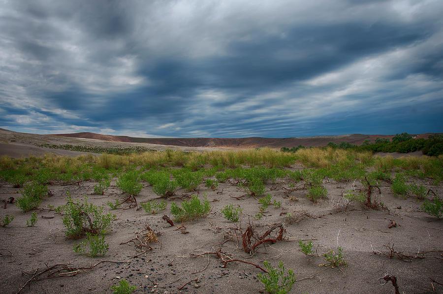 Bruneau Dunes Photograph by Jason Branum