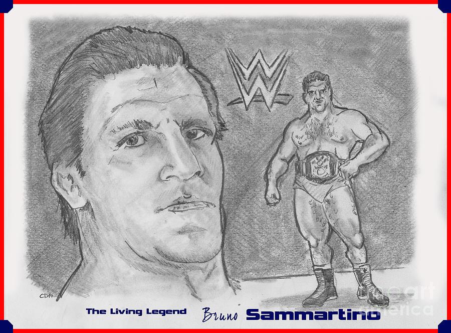 Wwe Drawing - Bruno Sammartino The Living Legend by Chris  DelVecchio