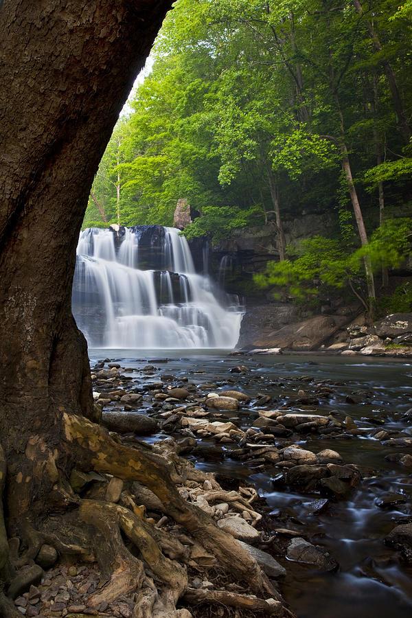 Brush Creek Falls II Photograph