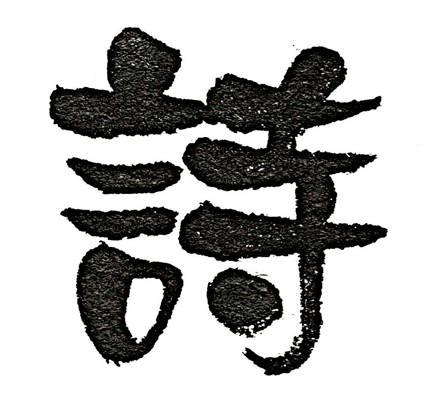 Brush To Write Chinese Characters Meaning Poetry Drawing By Chun Su