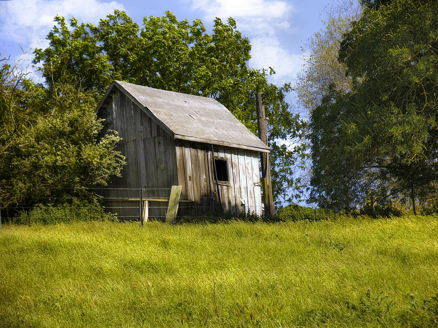 Landscape Photograph - Brushy Peak  Cabin by Karen  W Meyer