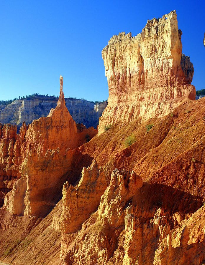 Bryce Canyon National Park Photograph - Bryce 4 by Marty Koch