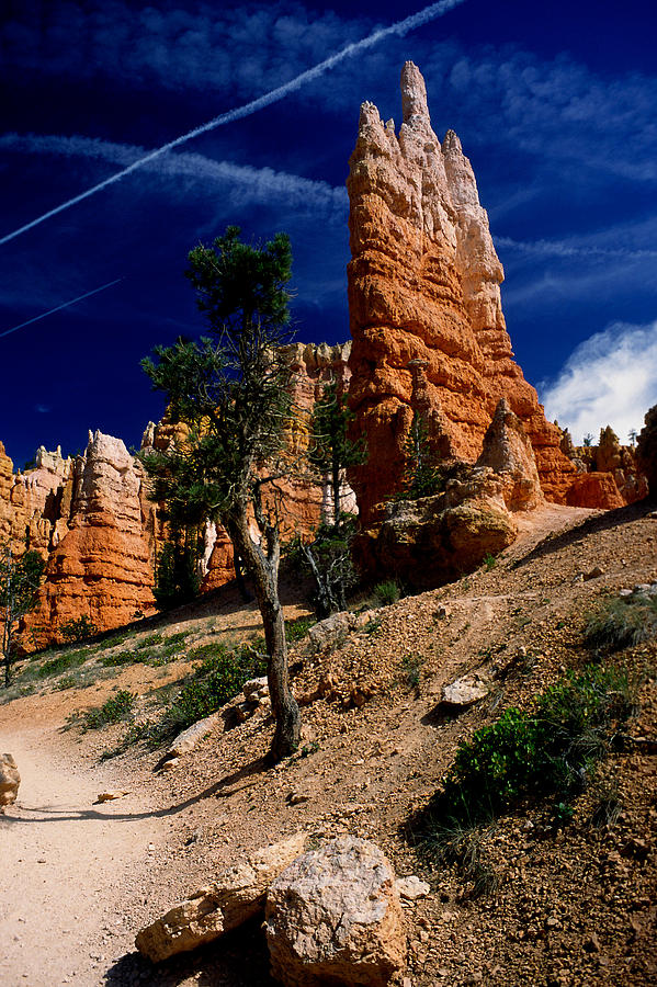 Bryce Canyon Photograph - Bryce Canyon 10 by Art Ferrier