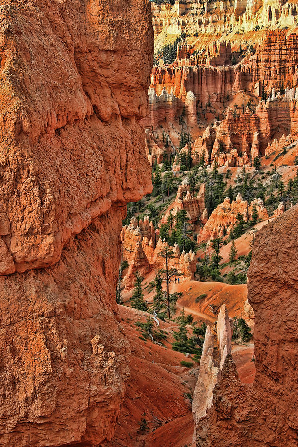 Utah Photograph - Bryce Canyon 21 - Sunrise Point by Allen Beatty