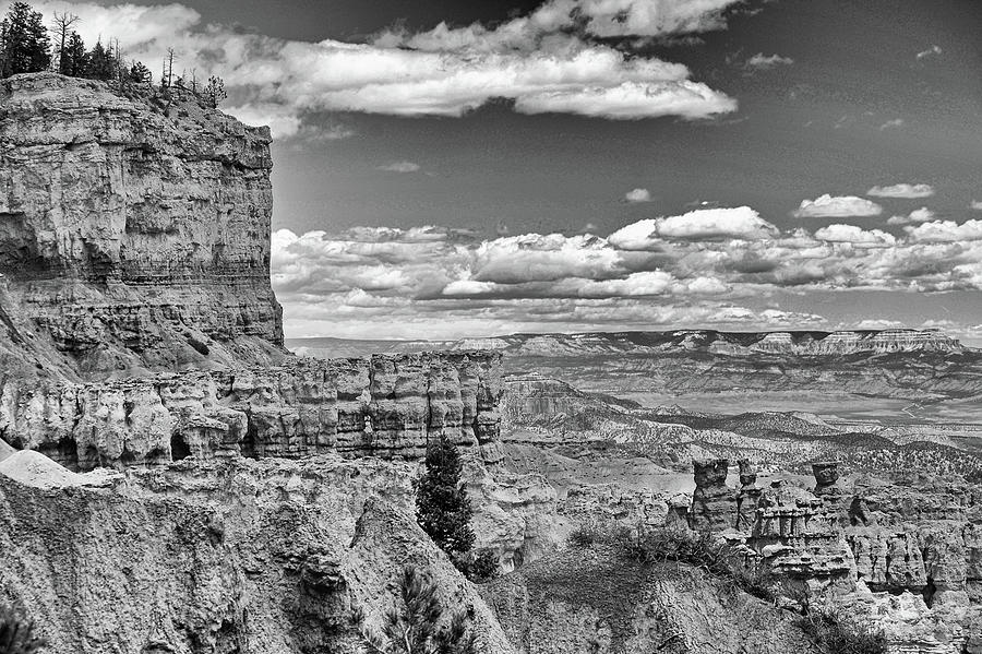 Bryce Canyon in black and white by Nancy Landry