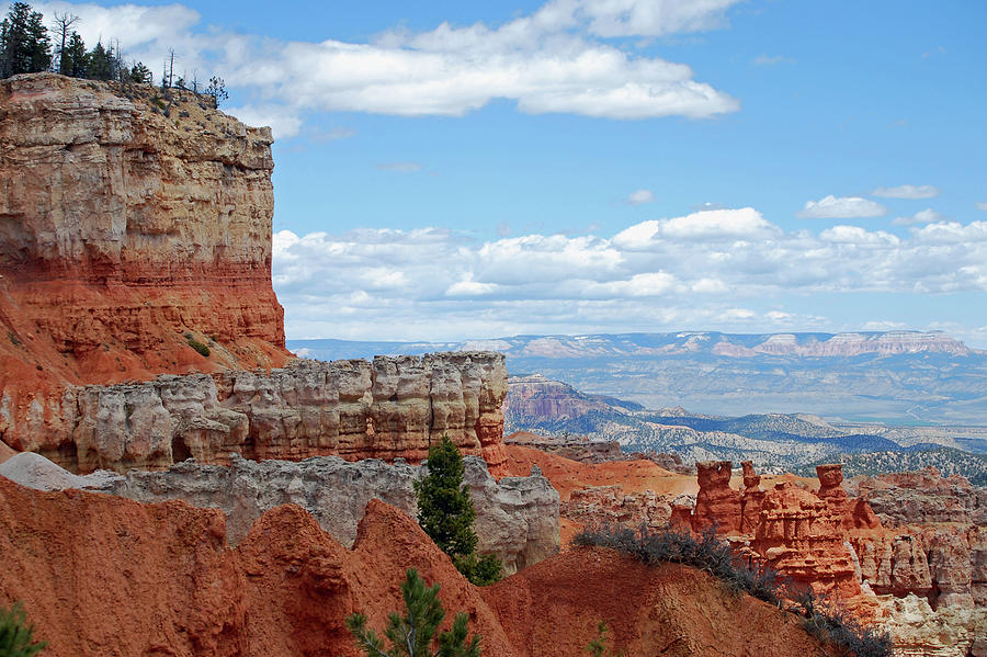 Bryce Canyon by Nancy Landry