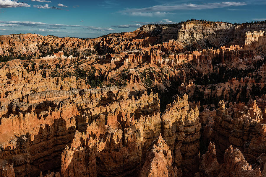 Bryce Canyon National Park 4C by Don Risi