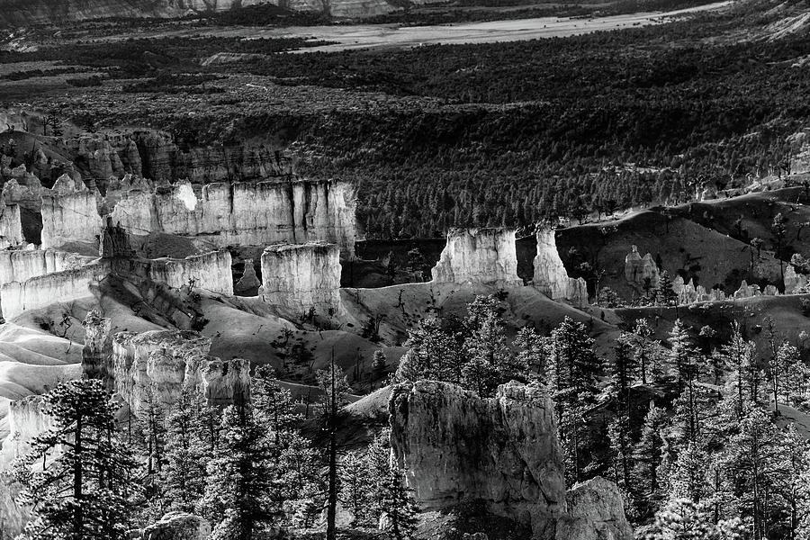 Bryce Canyon National Park 5BW  by Don Risi