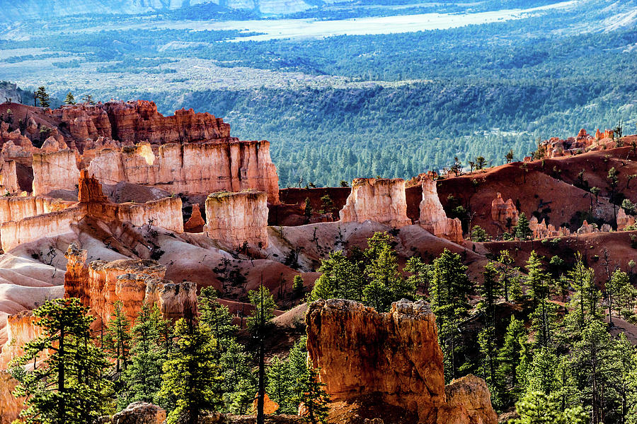 Bryce Canyon National Park 5C by Don Risi