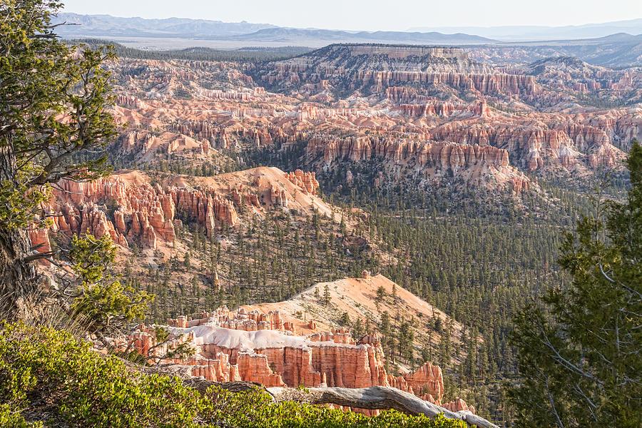 Bryce Canyon National Park Views Photograph