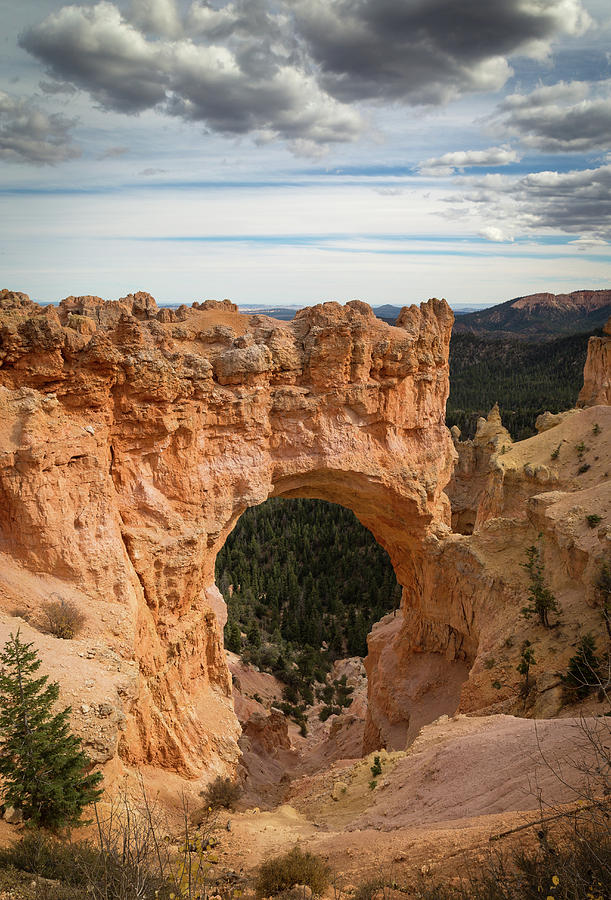 Bryce Canyon Natural Bridge by Kathleen Scanlan