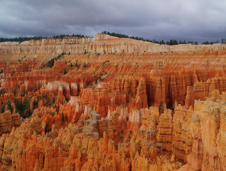 Bryce Canyon National Park by Broderick Delaney