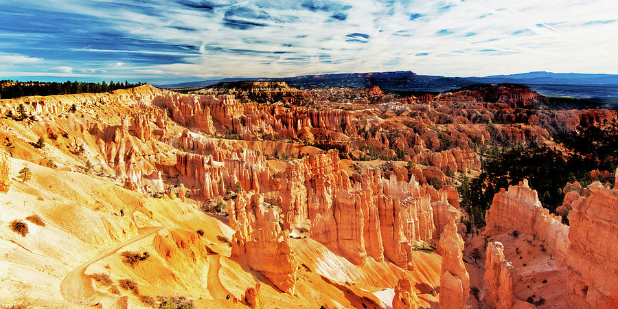Bryce Canyon Overlook Photograph by Norman Hall