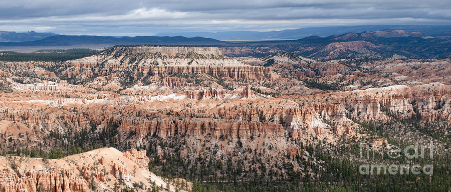 Bryce Canyon National Park Photograph - Bryce Canyon Overlook by Sandra Bronstein