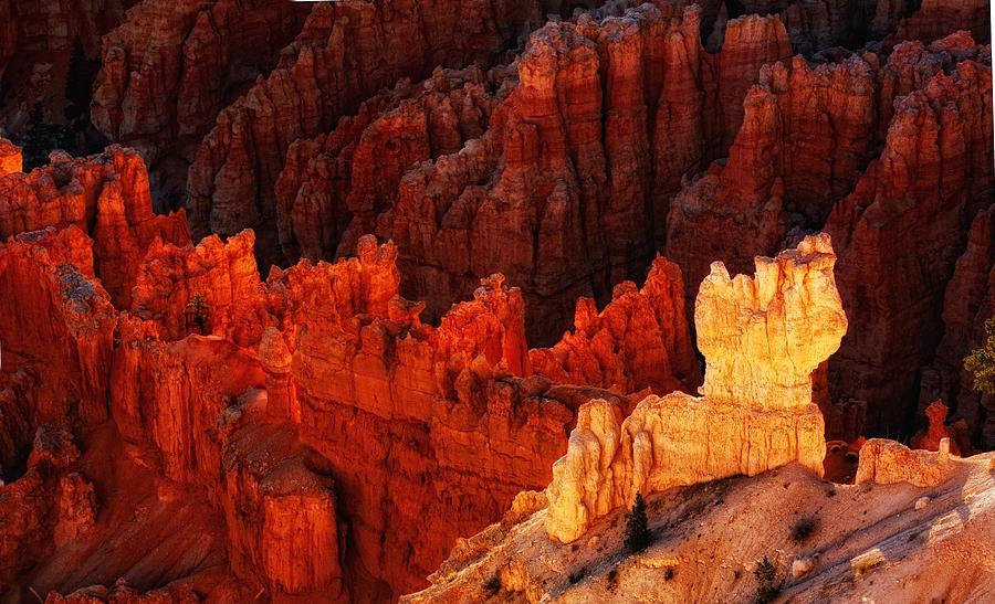 Landscape Photograph - Bryce Canyon Sunrise by Bob Coates