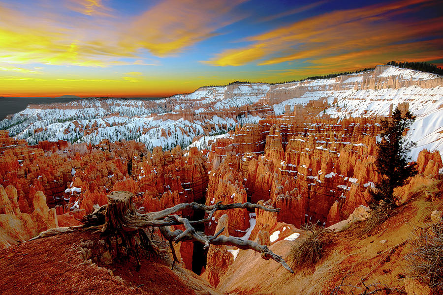 Bryce Canyon Sunrise Photograph by Norman Hall