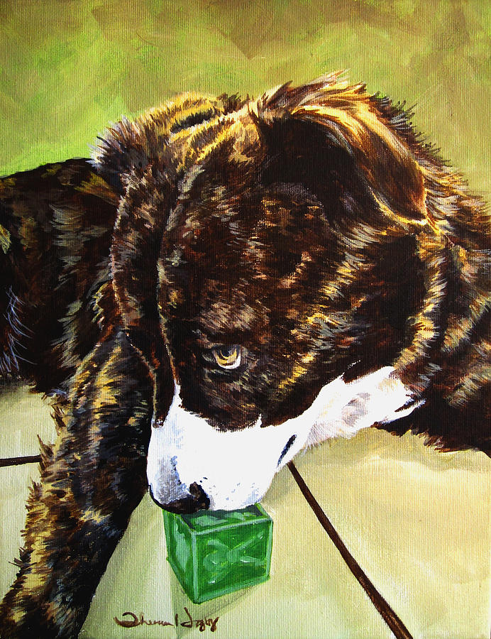 Pet Painting - Bryndals Toy by Theresa Higby