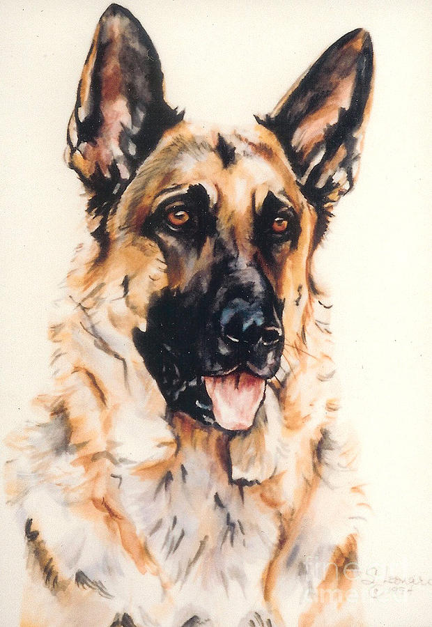 German Shepherd Painting - Bubba by Suzanne Leonard