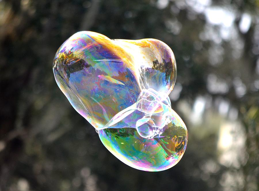 Bubble Photograph - Bubble Fun by Richard Bryce and Family