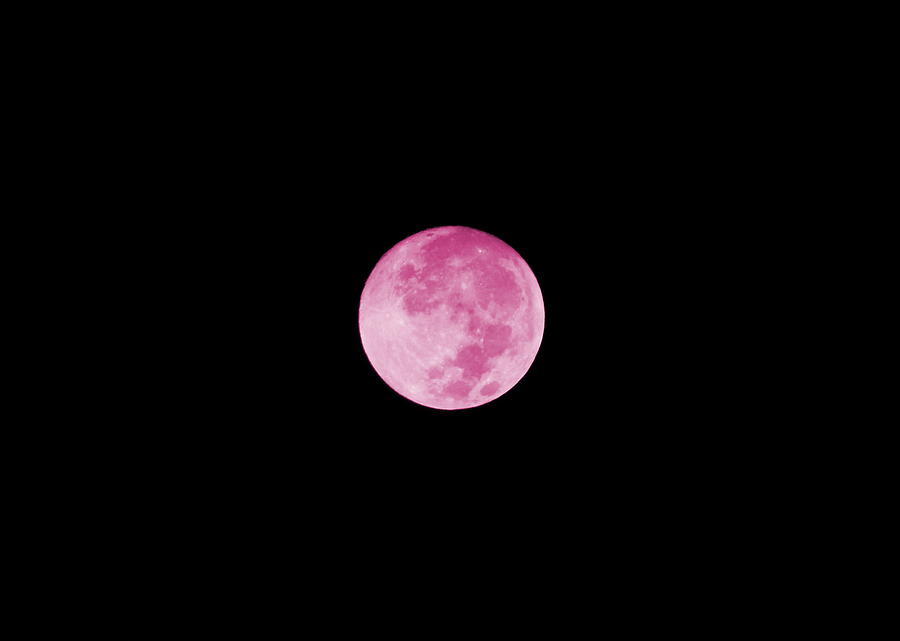Pink Moon Digital Art - Bubblegum Moon by Colleen Cornelius