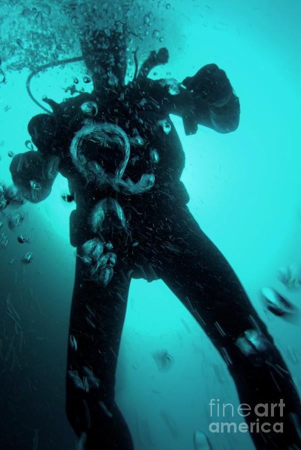Adventure Photograph - Bubbles Surrounding A Scuba Diver Underwater by Sami Sarkis