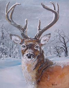 Buck In Snow Painting by Merideth Van Every