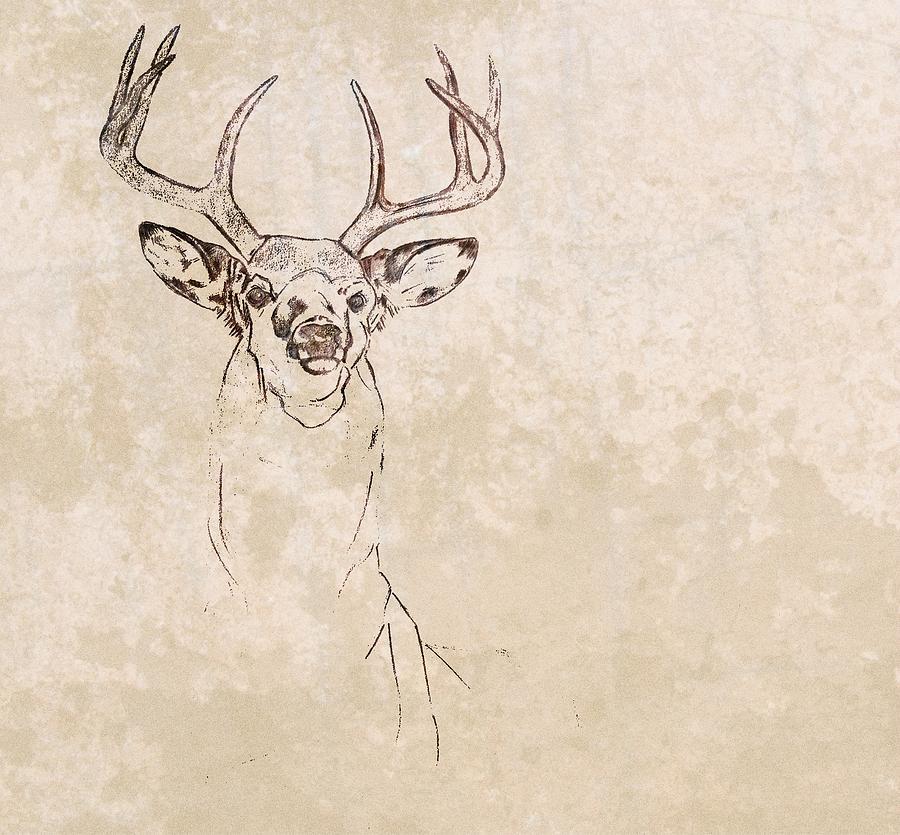 Buck Unfinished Art Photograph