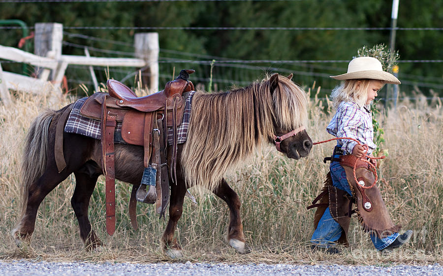 Horse Digital Art - Buckaroo Cowgirl by Cindy Singleton
