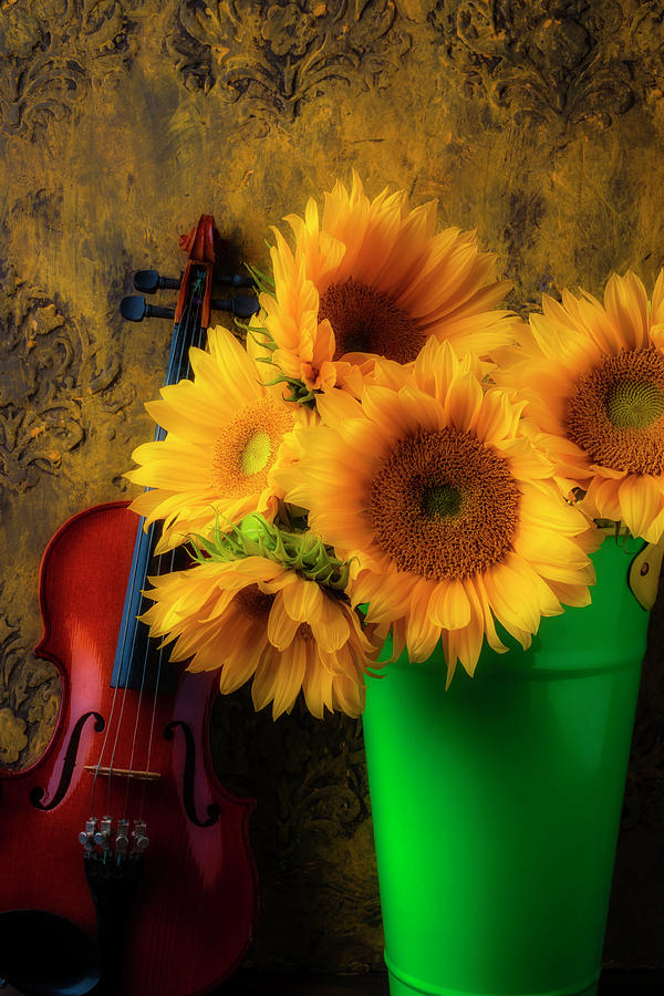 Sunflower Photograph - Bucket Of Sunflowers With Violin by Garry Gay