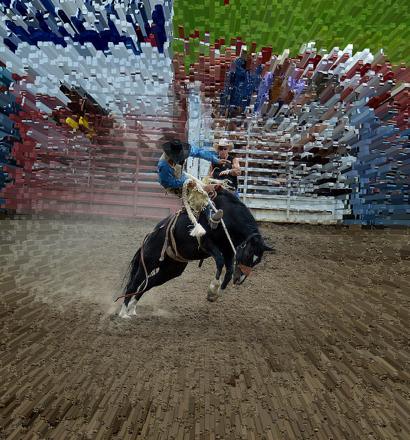 Horse Photograph - Bucking Bronco by Fay Geddes