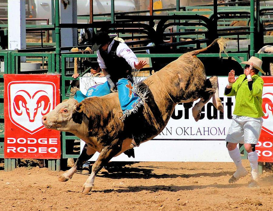 Rodeo Photograph - Bucking Bull Dangers by Cheryl Poland