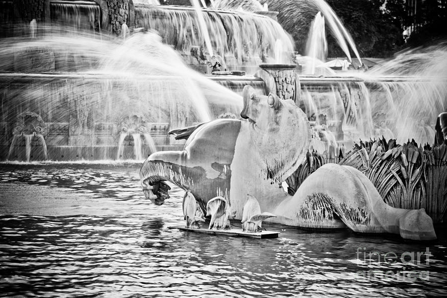 Buckingham Photograph - Buckingham Fountain Chicago by Paul Velgos
