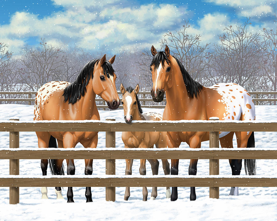Horses Painting - Buckskin Appaloosa Horses In Snow by Crista Forest
