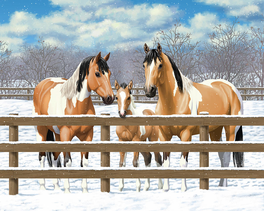Horses Painting - Buckskin Paint Horses In Snow by Crista Forest