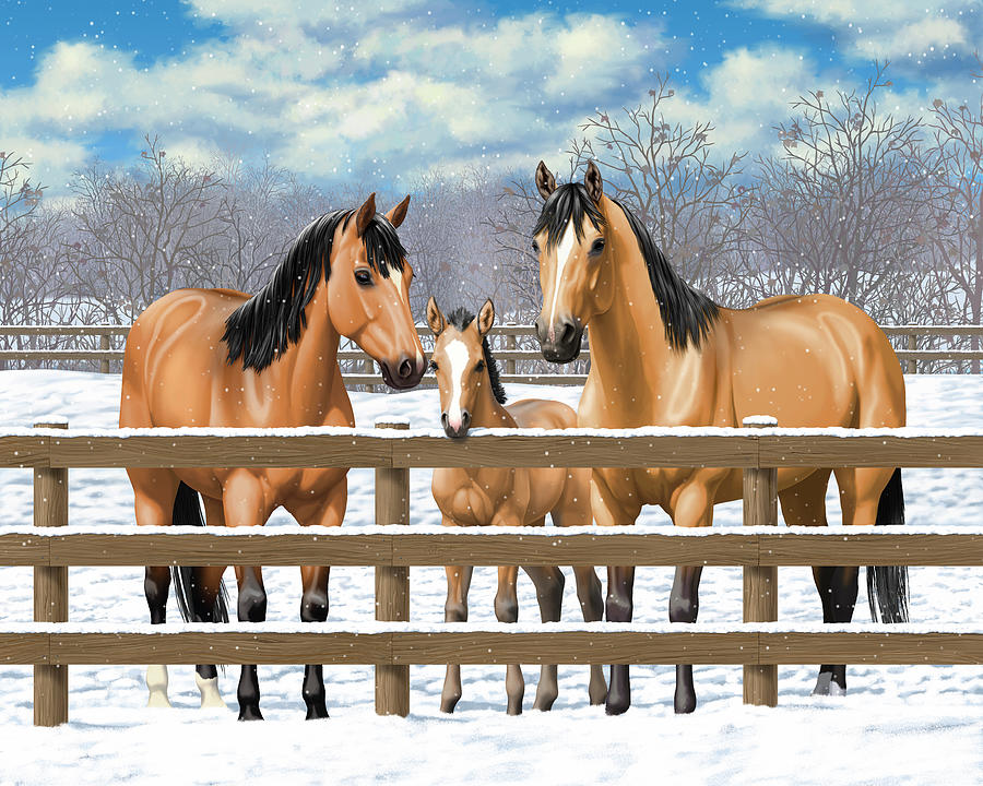 Horses Painting - Buckskin Quarter Horses In Snow by Crista Forest