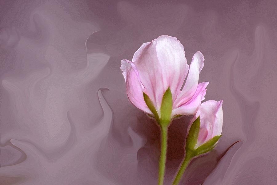 Flower Bud Photograph - Bud Of Art by Jim  Darnall