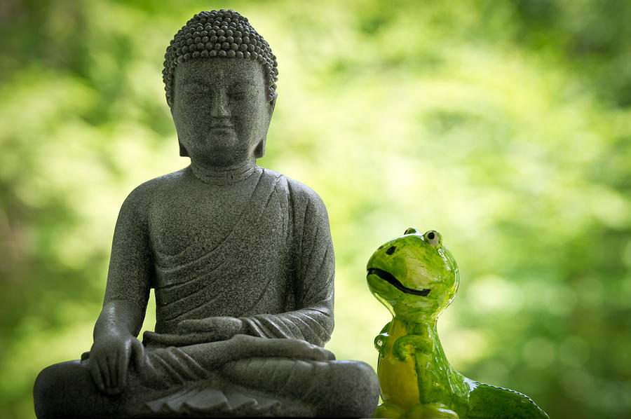Buddha Photograph - Buddha And Buddy by Edward Myers