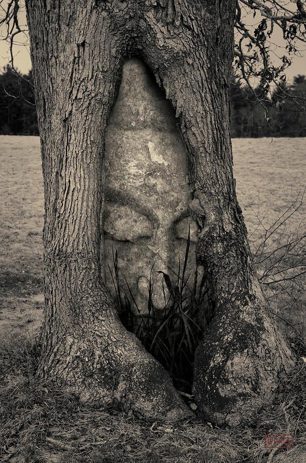 Black Photograph - Buddha II by Dave Gordon