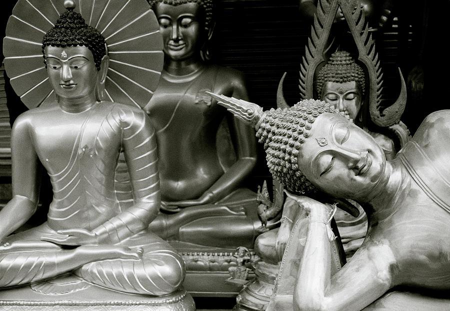 Buddha Of The Urban Street by Shaun Higson