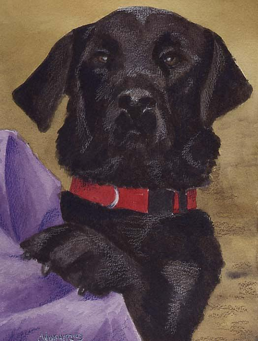 Dog Painting - Buddy 2 by Christine Winship