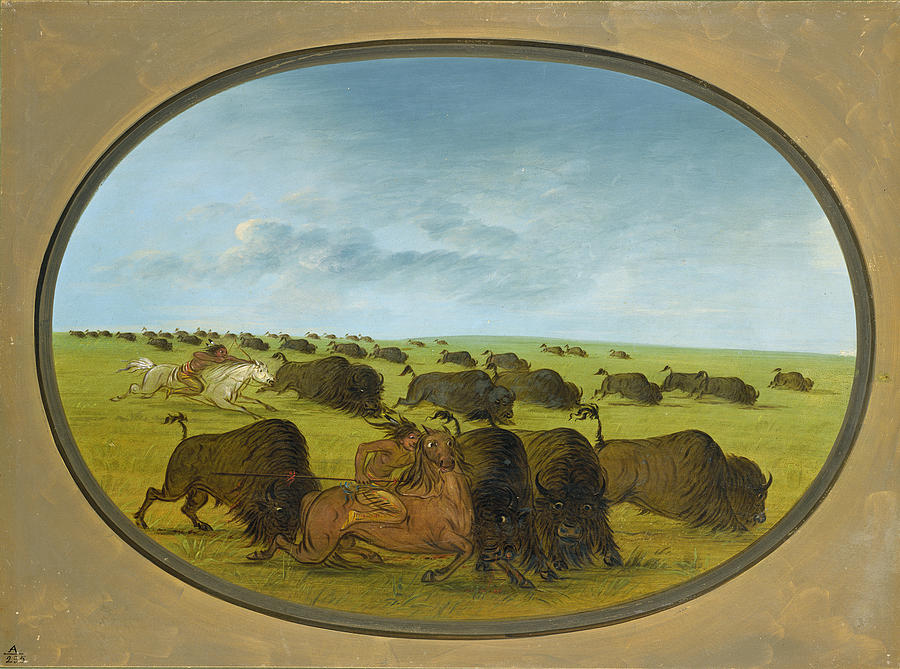 George Catlin Painting - Buffalo Chase With Accidents by George Catlin