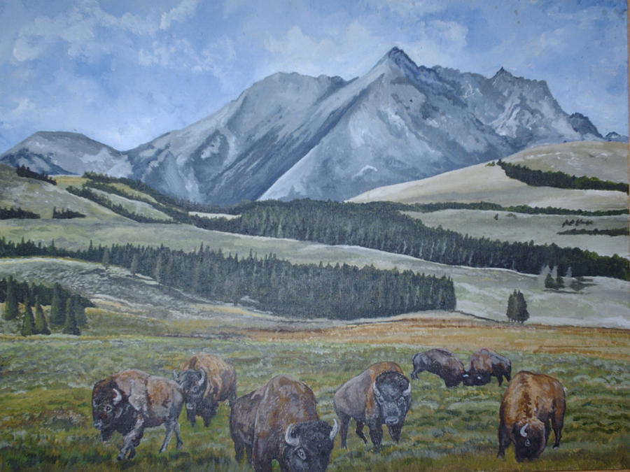 Buffalo Painting by Harvey Copeland