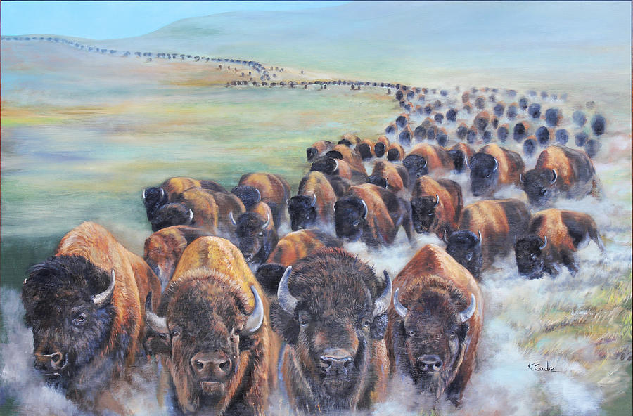 buffalo stampede painting by karen cade