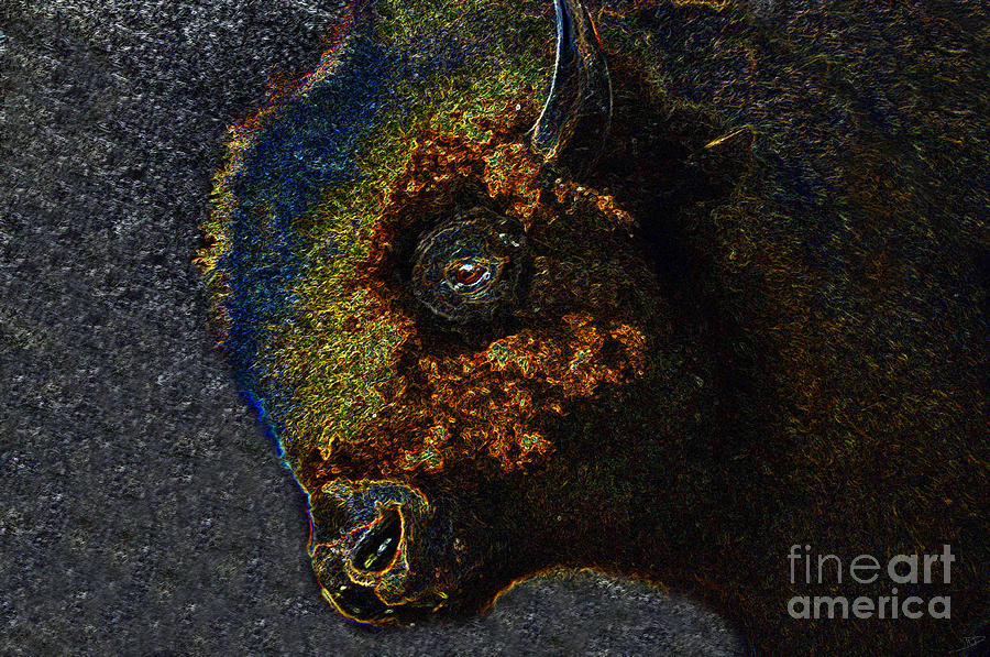 Art Painting - Buffalo Vision by David Lee Thompson