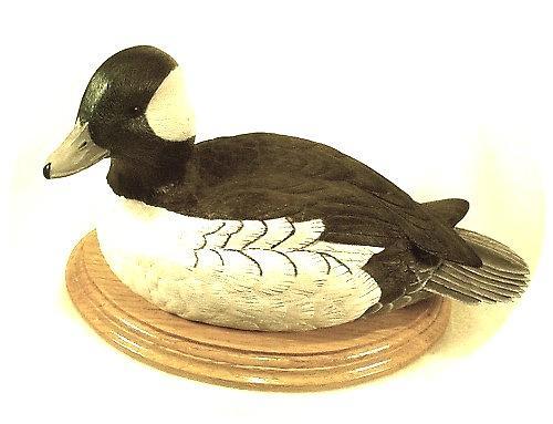 Waterfowl Sculpture - Bufflehead Drake by Peter Vaice