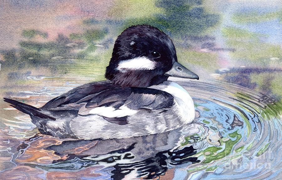 Bird Painting - Bufflehead Duck by Lorraine Watry