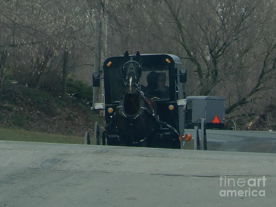 Amish Photograph - Buggies Traveling Both Ways by Christine Clark